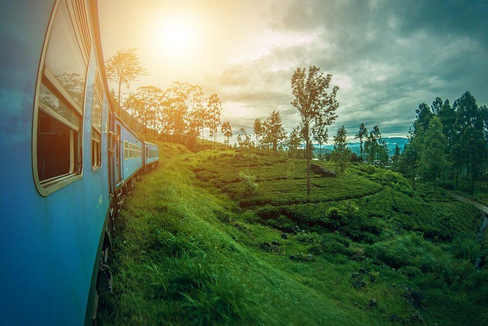 Partir à la découverte du Sri Lanka : ce qu'il ne faut pas manquer